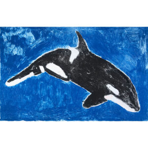 Orca monoprint by Margaret B.